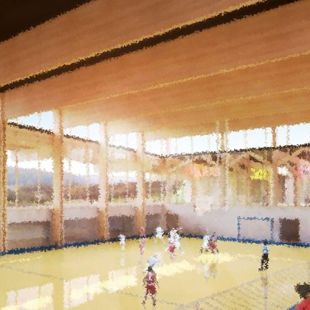 Vue depuis plan du futur complexe sportif de Joinville, vue de l'intérieur du gymnase