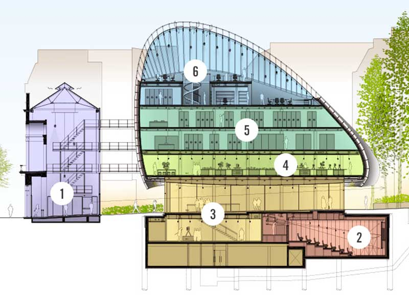 Plan en coupe dans son environnement de la Fondation Seydoux à Paris, bâtiment notable imaginé par Renzo Piano, aw-eck à l'Ingénierie structure phase EXE – Coque en béton projetée, modélisation éléments finis et calculs.