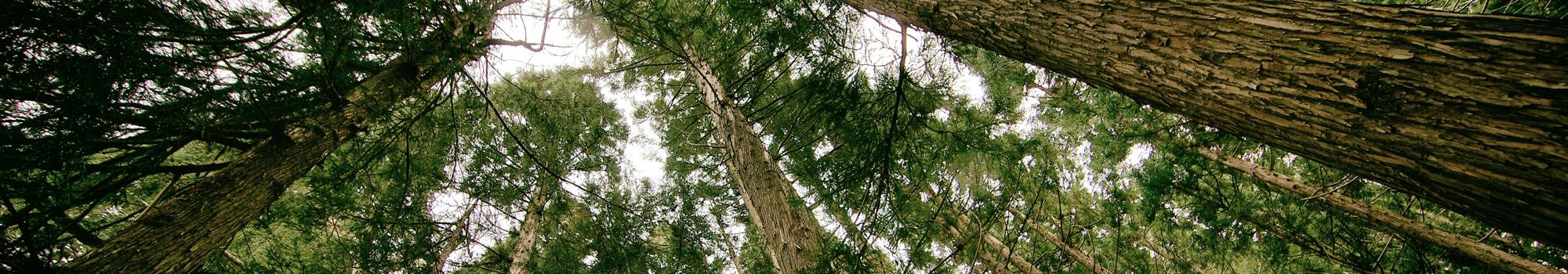 Préserver la nature, un axes prioritaire aujourd'hui