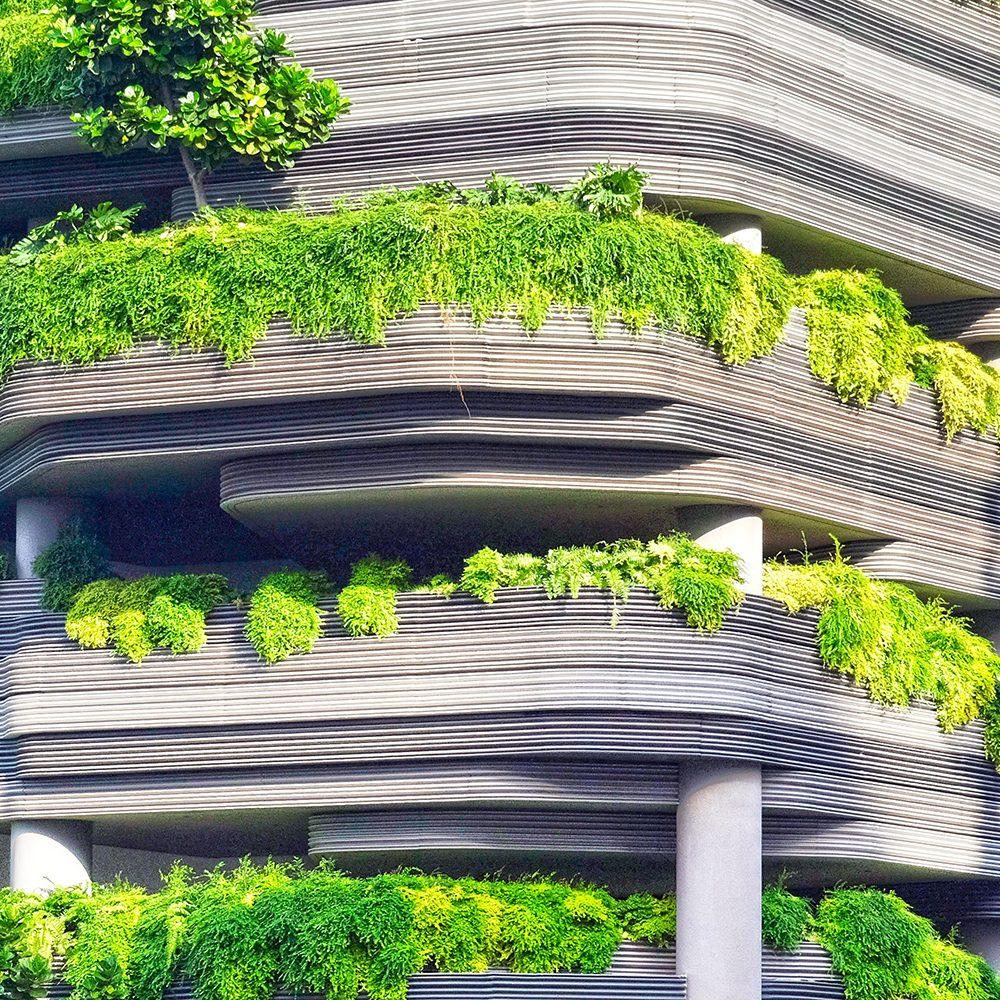 Parking végétal