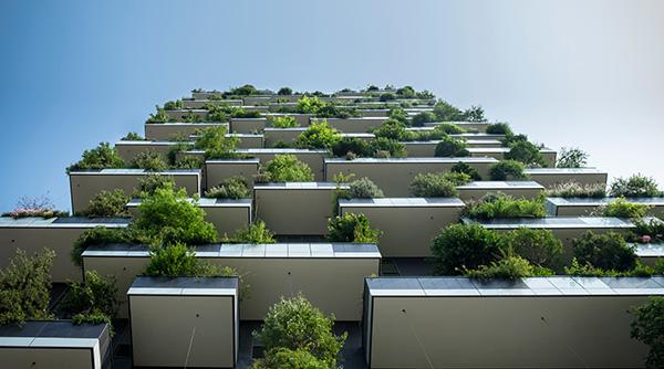 Immeuble végétal vue du bas